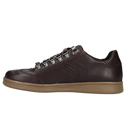 Homme Basses Sneakers Geox Coffee Warrens C6009 Marron B U X1wXFzqS