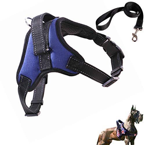 Adjustable Dog Harness,No Pull Dog Harness Outdoor Vest with Easy Control Handle and Control Dog Anxiety Relief, No Tugging or Choking for Puppies (L, Blue)