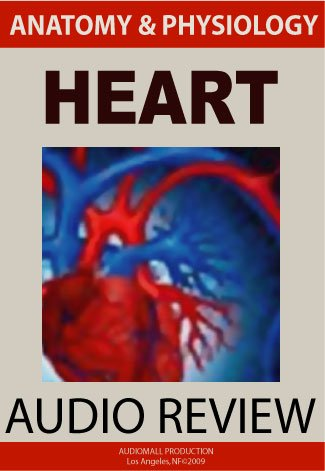 Heart (Anatomy and Physiology) by WFPRO
