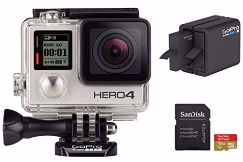 GoPro Camcorder Battery Charger MicroSD product image