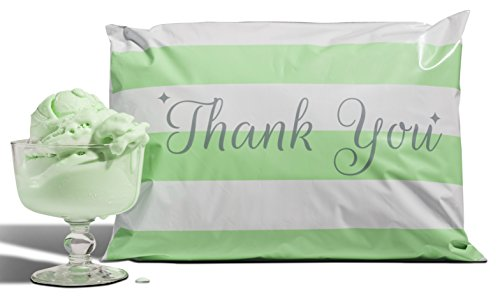 Mint Envelope (10x13 Pack of 100 Mint Chocolate Chip Poly Mailers a la mode)