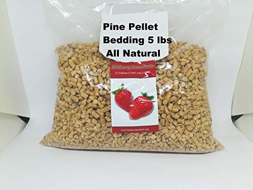 Pine Pellet Bedding, 5 Pounds all Natural, For All Your Large or Small Animal Bedding Needs, Earth Friendly, No Dust Bulk ()