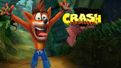 Expert choice for crash bandicoot birthday decorations