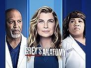 Grey's Anatomy Seaso