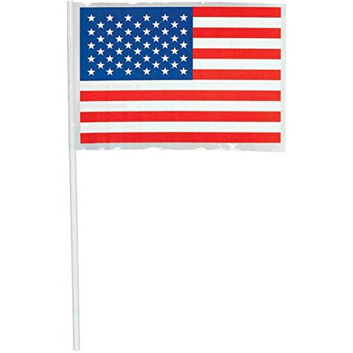 American Party Flag, 48 Ct. -