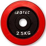 IROTEC(アイロテック) ラバープレート2.5KG / バーベル ダンベル兼用