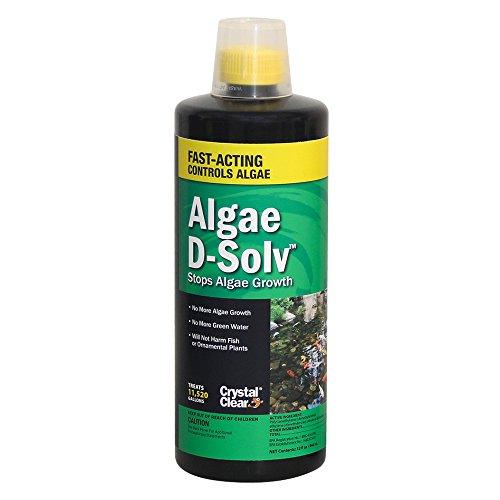 CrystalClear Algae D-Solv 32 oz ()