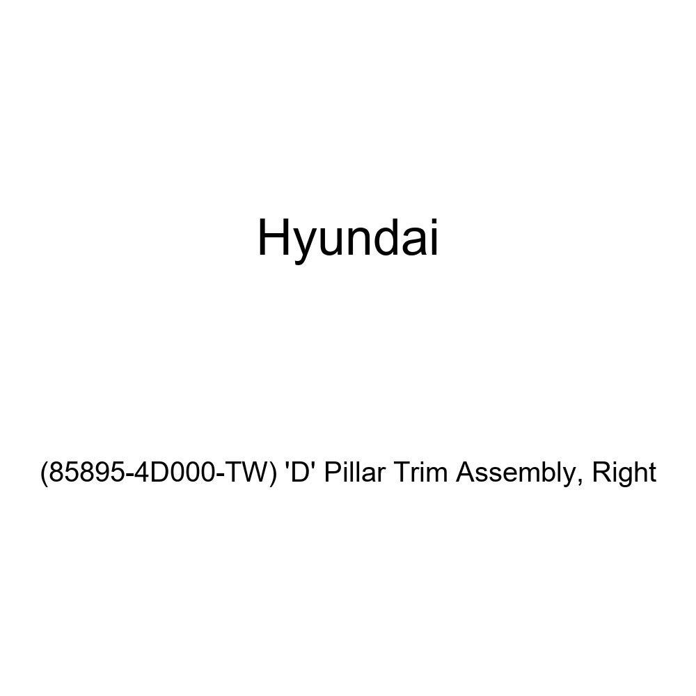 D Pillar Trim Assembly Right Genuine Hyundai 85895-4D000-TW
