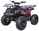 Icebear Super Trooper 125cc Kids ATV Metallic Burgundy/Black