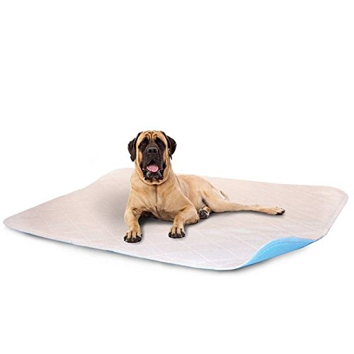 """LennyPads Whelping Pads - Ultra Absorbent, Reusable, Training, Housebreaking and Travel Washable Pee Pads – 6 Pack (48""""x72"""") King Pad by LennyPads"""