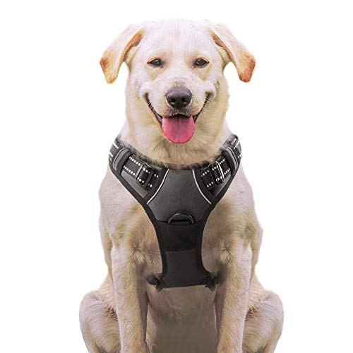 Eagloo No Pull Dog Harness with Front Clip, Walking Pet Harness with 2 Metal Ring and Handle Reflective Oxford Padded Soft Vest for Small Medium Large Breed (Black, S)
