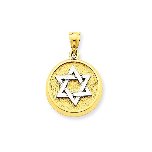 14k Gold Two-Tone Gold Solid Satin Finish Flat Back Star of David Disc Charm Pendant (1.06 in x 0.67 in)