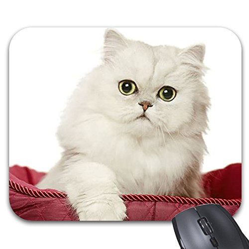 Simty 106 Mousepads Persian Cat White Kitten Mouse Mat 9 X 7.5in