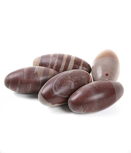 Buycrafty Large Narada River Shiva Lingam Stone Approx 1 Inches Pack Of 5 Positive Energy
