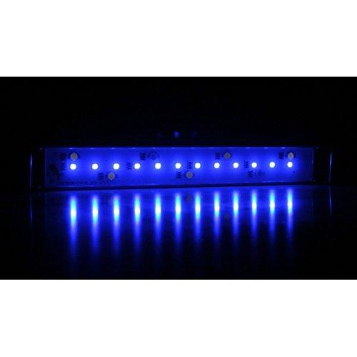 Arcadia - Classica LED Stretch Lichtleiste Marine, Leuchte für Meerwasser-Aquarien