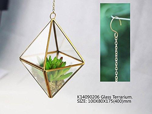 NoahD-Noah-D-Rhombus-Hanging-Succulent-Plants-Glass-Terrarium-with-Chain