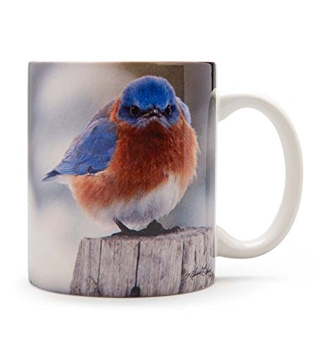 Songbird Essentials 15 oz Mad Bluebird Ceramic Mug