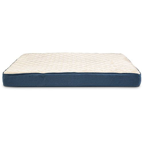 Doctors Foster + Smith Orthopedic Lounger Dog Bed in Navy, 30' L x 40' W, Large, Blue