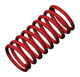Traxxas Red Gtr Shock Springs (4.9 Rate Silver)
