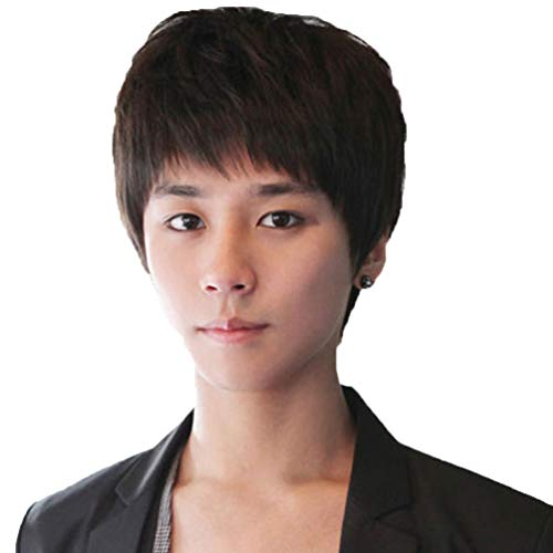Rise World Wig Cool Mens Boys Short Straight Black Hair Wigs Party Heat Resistant Cosplay Wig -