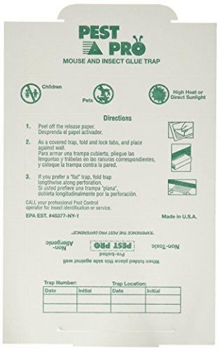 Pest Glue Board - 6
