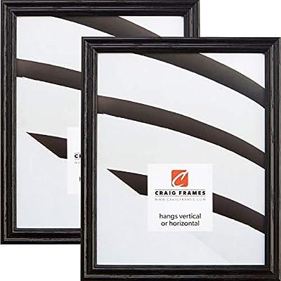 Amazon.com - Craig Frames 200ASHBK 12 x 18 Inch Picture Frame, Black ...