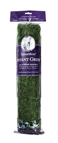 SuperMoss 100533144 Instant Green 18X48 Moss Mat, 18