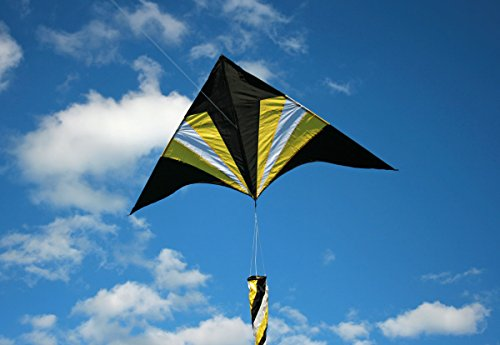 Weifang New Sky Kites Flying Arrow Kite Delta Shape with Flying Line and Handle 6 Ft Wide, Easy to Fly