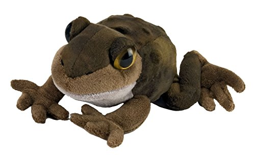 Toad Gifts | Kritters in the Mailbox | Toad Collectibles