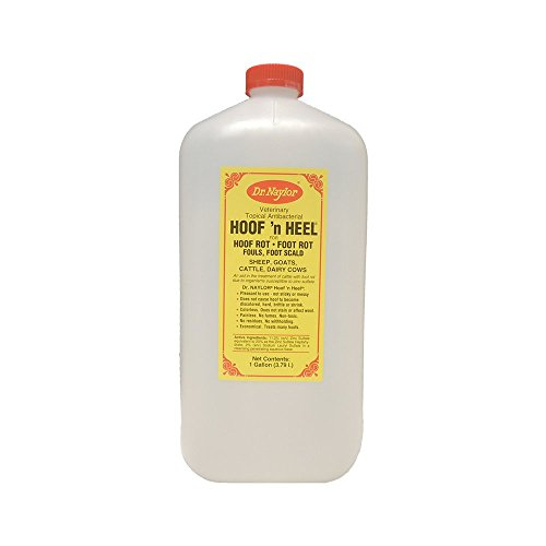 Dr. Naylor Hoof n' Heel (1 Gal) - Traditional Foot Rot Treatment by Dr. Naylor
