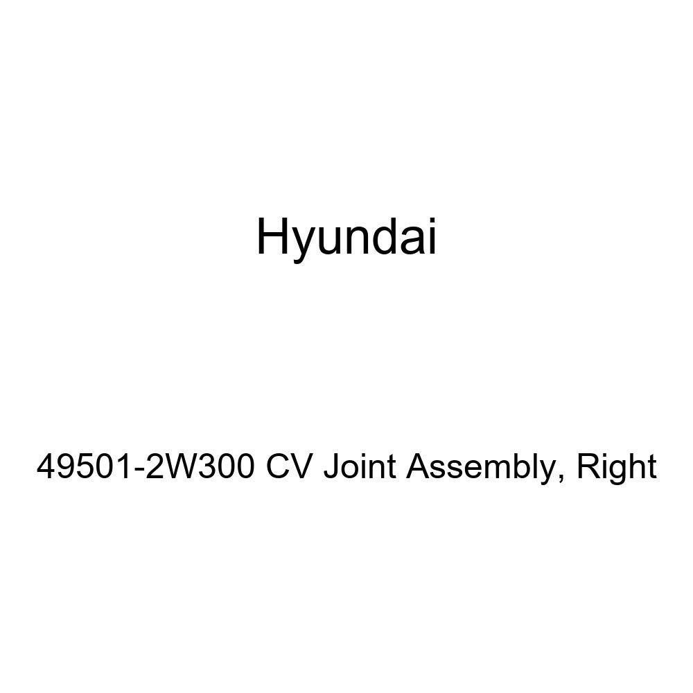 Right Genuine Hyundai 49501-2W300 CV Joint Assembly