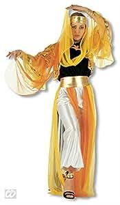 Harem bailarina traje XL