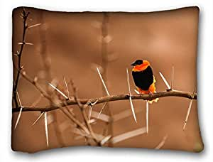 Custom Cotton & Polyester Soft Animal Custom Cotton & Polyester Soft Rectangle Pillow Case Cover 20x26 inches (One Side) suitable for Queen-bed
