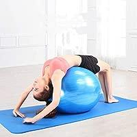 ZZKJNIU Bola De Yoga Equipo Fitness Ejercicio para ...