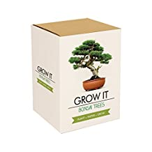 Gift Republic Grow It. Grow Your Own Bonsai Trees