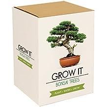 Gift Republic Grow It. Grow Your Own Bonsai Trees