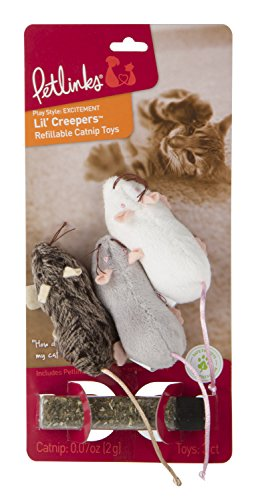 with Catnip Toys design