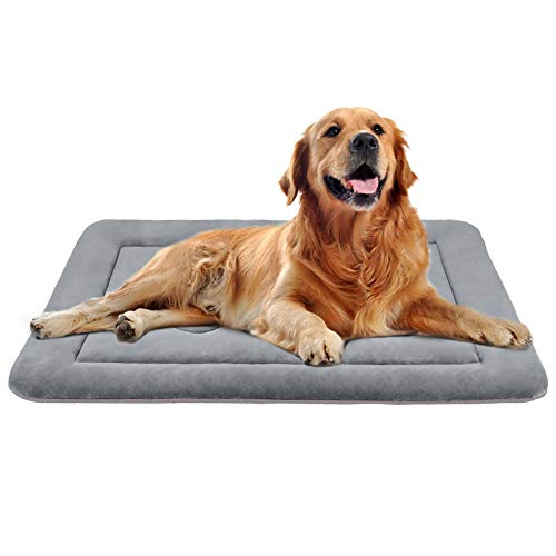 JoicyCo Dog Bed Large Crate Mat 42 in Anti-Slip Washable Soft Mattress Kennel Pads (Dog Beds For Extra Large Crate)