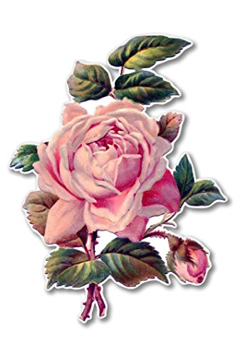 Vintage Rose Beautiful Vinyl Sticker - Car Window Bumper Lap