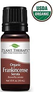 Plant Therapy USDA Certified Organic Frankincense Serrata Essential Oil. 100% Pure, Undiluted, Therapeutic Grade. 10 ml (1/3 oz).