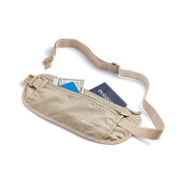 6a14e1ec98 AmazonBasics – Portafogli a marsupio da viaggio con protezione RFID ...
