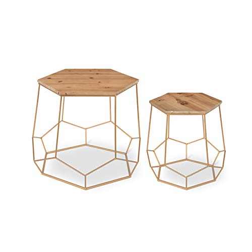 Kate and Laurel Gada 2-Piece Rustic-Modern Side Accent Tables Geometric Metal Gold Base with Natural Wood Top