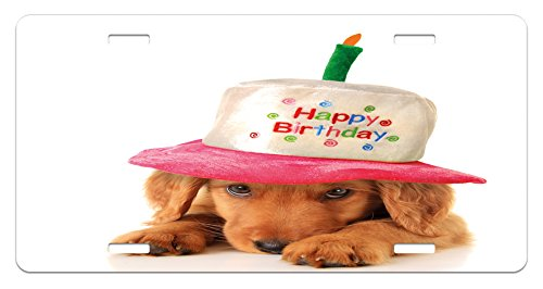 (Ambesonne Birthday Party License Plate, Puppy Wearing a Party Cone Shaped Hat with Candlestick Party Greetings, High Gloss Aluminum Novelty Plate, 5.88