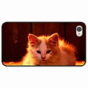 Zheng caseZheng caseiPhone 4/4s 4S Black Hardshell Case light fluffy Desin Images Protector Back Cover