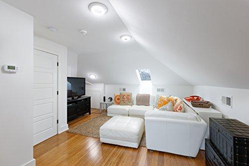 Haiku Home Premier LED Indoor/Outdoor 2200-5000K Lighting, White, Works with Amazon Alexa by Haiku Home (Image #3)