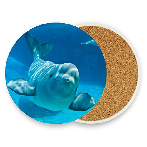 LoveBea Beluga Whale Facts Coasters, Protection for Granite, Glass, Soapstone, Sandstone, Marble, Stone Table - Perfect Drink Coasters,Round Cup Mat Pad for Home, Kitchen Or Bar Set of 2
