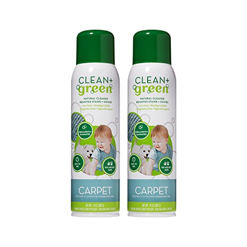Eco Green Clean (Clean+Green Non-Toxic Natural Carpet Rug Stain Remover, Deodorizer, Odor Eliminator - Multi Purpose Spray- Safe for Children, Pets, People, and Environment (14oz) (2 Pack))