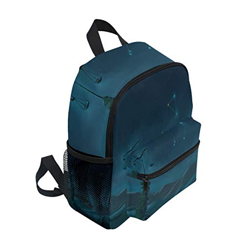 Buy patagonia mini backpack