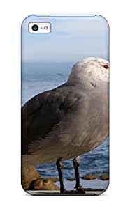 ZippyDoritEduard Design High Quality Monterey Gull S Birds Beach Seagull Animal Bird Cover Case With Excellent Style For Iphone 5c