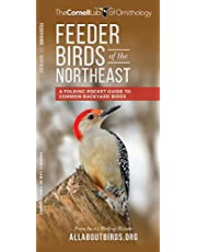 Feeder Birds of the Northeast: A Folding Pocket Guide to Common Backyard Birds